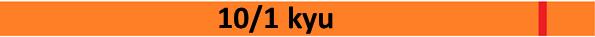 10_kyu2