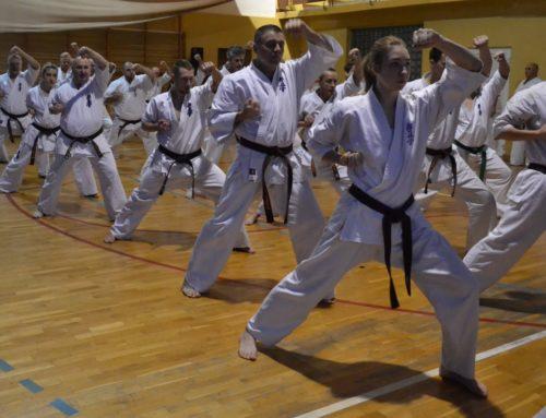 Zimowe zgrupowanie Karate Kyokushin Sosai – Tarnobrzeg